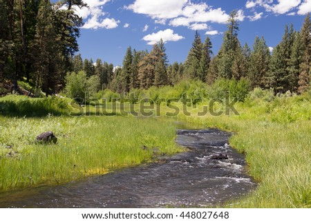 North fork of Oregon's Crooked River with blue sky and green grass - stock photo