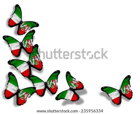 North Rhine-Westphalia flag butterflies, isolated on white background - stock photo