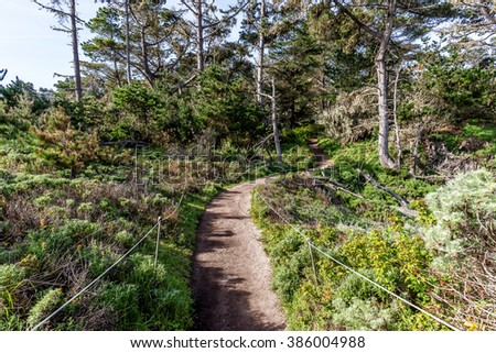 North Shore Trail at Point Lobos State Natural Reserve is ideal for hiking, walking running, along the rugged Big Sur coastline, near Carmel and Monterey, CA. on the California Central Coast. - stock photo