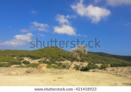 Northern Cyprus valley. Nature. Landscape