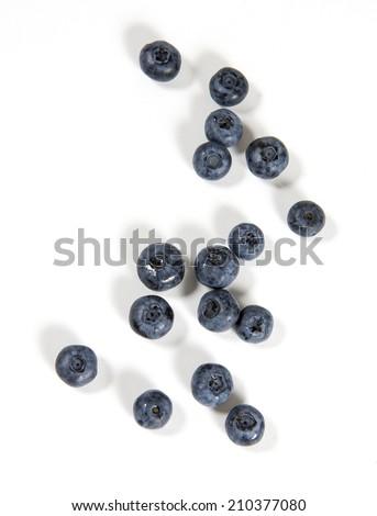 northern highbush blueberries. Image taken from above. - stock photo
