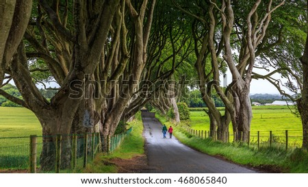 Northern Ireland, UK - July 4, 2014 :  Couple are taking a walk at  the Dark Hedge, the romantic, atmospheric, tunnel-like avenue of intertwined beech trees, planted in the 18th-century.