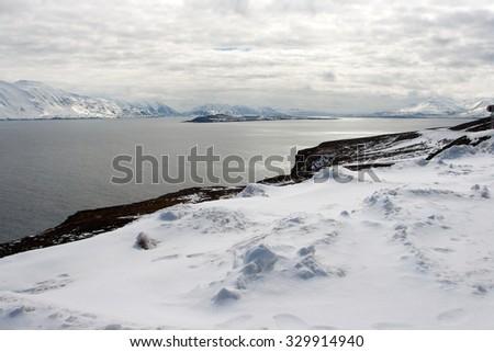 Northern landscape. Iceland. - stock photo
