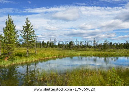 Northern landscape with blue lake and marsh. Finland, Lapland - stock photo