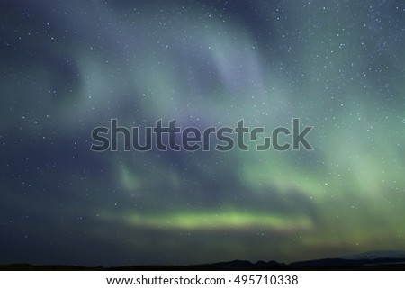Northern Lights in the starry night sky Iceland