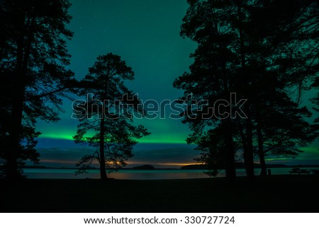 Northern lights over calm lake landscape with trees silhouette at the front (Aurora borealis) in Sweden - stock photo