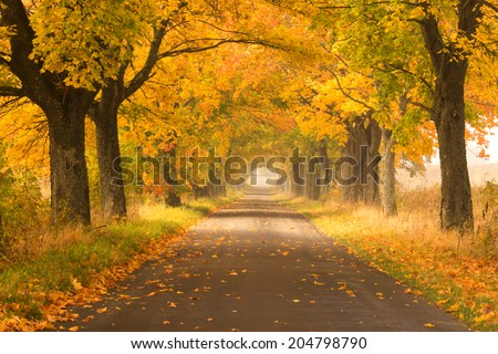 Northern Poland./ Autumn road. - stock photo