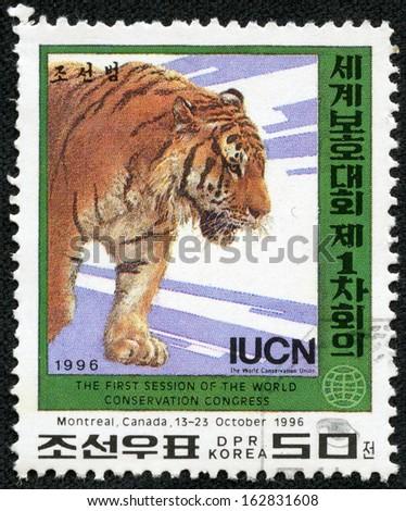 NORTK KOREA - CIRCA 1996: A stamp printed in DPR Korea shows tiger, circa 1996 - stock photo