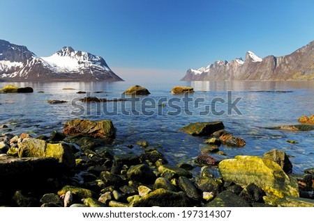 Norway fjord in island Senja at day