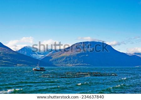Norwegian fish farming - stock photo