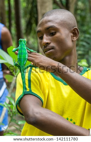 NOSY BE, MADAGASCAR, JAN 9: Unidentified Malagasy man with panther chameleon (furcifer pardalis) on jan 9, 2007 in Nosy Komba (Nosy Be), Madagascar - stock photo
