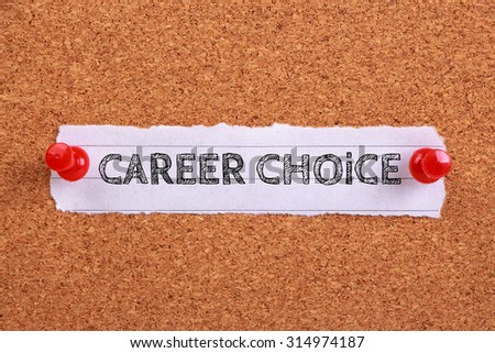 essays about career choices