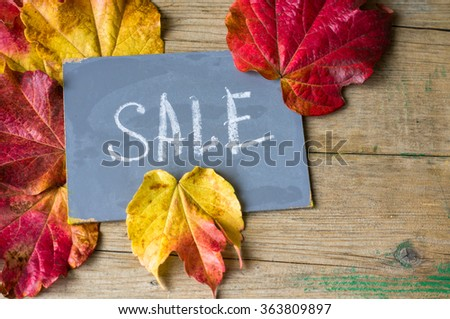 Note with Sale word on the chalkboard and bright colors ivy plant leaves on wooden background
