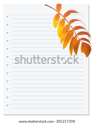 Notebook paper with autumn leaf of rowan. Back to school background.  - stock photo