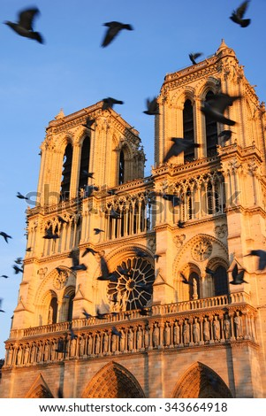 Notre Dame cathedral at sunset and flying (blurred) black birds in the sky (Paris, France). Soul metaphor.  - stock photo