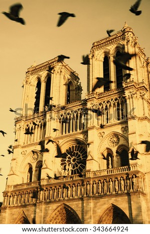 Notre Dame cathedral in sunset light and flying (blurred) black birds in the sky (Paris, France). Soul metaphor. Toned photo. - stock photo
