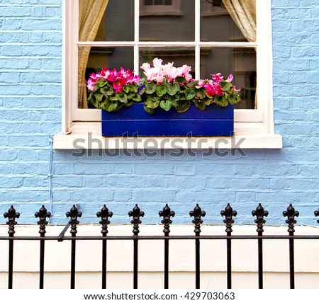 notting hill in london england old suburban and antique  flowers