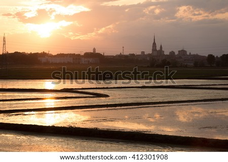 Novara cityscape with rice cultivation