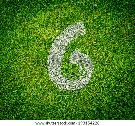 number collection - 6 on green grass seamless texture