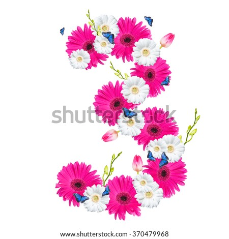 Number 3, flower isolated on white background. Gerber, tulips and butterfly  - stock photo