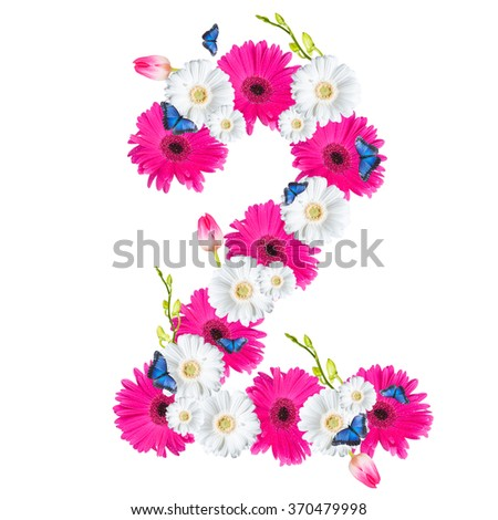 Number 2, flower isolated on white background. Gerber, tulips and butterfly  - stock photo