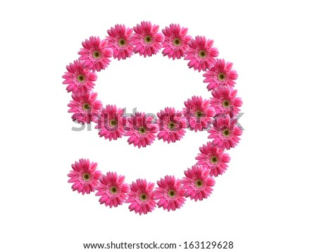 Number 9 from pink gerbera flowers alphabet isolated on white background - stock photo