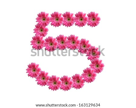 Number 5 from pink gerbera flowers alphabet isolated on white background - stock photo
