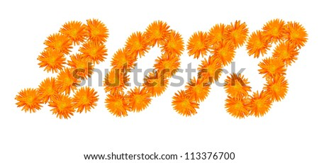 Number 2013 made of flowers of a calendula isolated on a white background. - stock photo