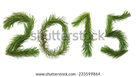Number  two thousand fifteen.  New year 2015. Numbers are made of a pine branches  - stock photo
