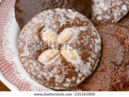 Nuremberg Lebkuchen (spiced soft gingerbread) - stock photo