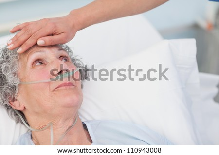 Nurse touching the forehead of a patient in hospital ward - stock photo