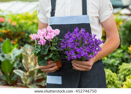 Nursing beauty. Cropped shot of two pots of pink and violet flowers florist holding pots