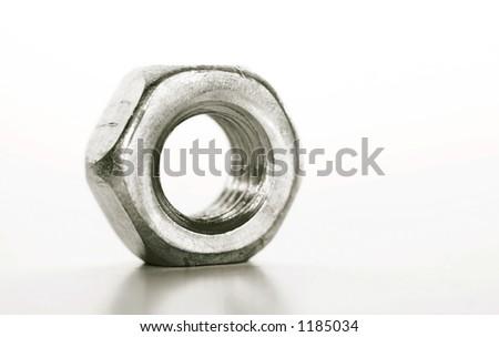 Nut - stock photo