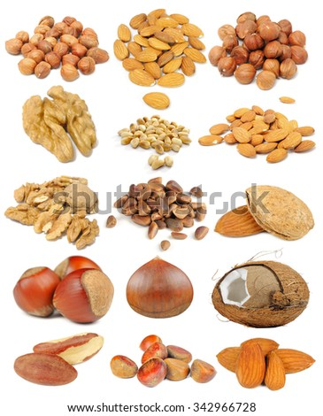 Nut set including hazelnuts, almonds, walnuts, peanuts, pine nuts, coconut, brazil nuts and chestnuts isolated on white background - stock photo