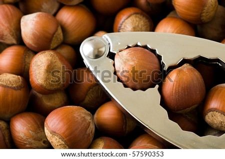 nutcrackers with nuts - stock photo