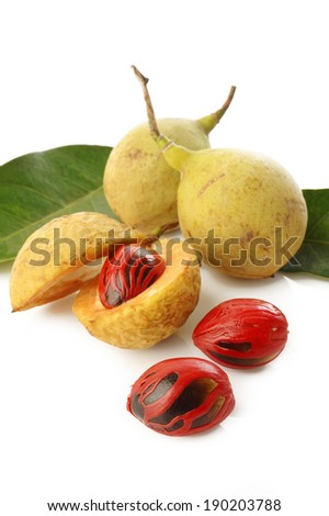 nutmeg fruits on white background - stock photo