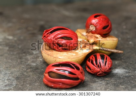 Nutmeg many isolated. Sectional view of ripe colorful red nutmeg fruit, seeds with selective focus Kerala India - stock photo