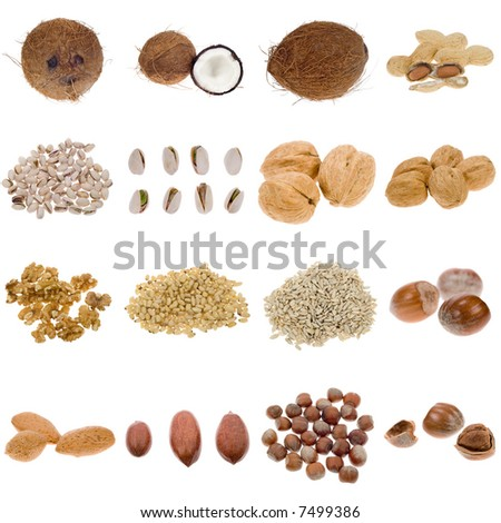 nuts and seeds collection isolated on a white background, all pieces individually photographed in studio and no shade so its easy to select.