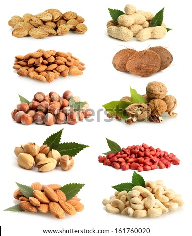 Nuts collection isolated on white - stock photo
