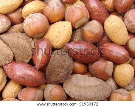 Nuts in shells 3 - stock photo