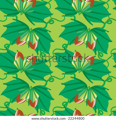 Nuts seamless pattern