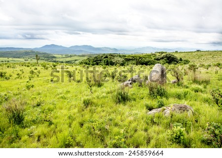 Nyika Plateau in Malawi, Central Africa, on a Rainy Day - stock photo