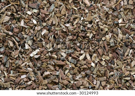 Oak bark texture - stock photo
