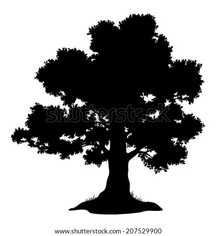 Oak tree with leaves and grass, black silhouette on white background. - stock photo