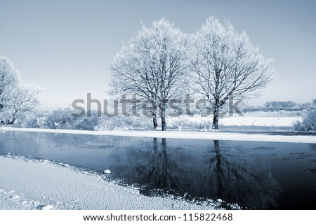 oak wood on coast river - stock photo