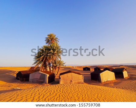 Oasis and a camp on Zagora desert in Morocco, Africa