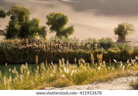 Oasis in desert at Mingsha Shan, Dunhuang, Gansu Province, China