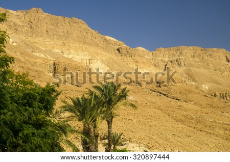 Oasis with green palm trees in Judean desert. Old mountains and rocks of legendary Old Testament times - stock photo