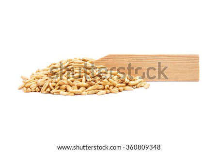 Oat at plate - stock photo