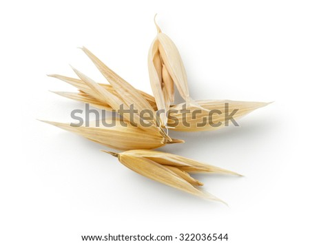 Oat grain isolated on white background. With clipping path. - stock photo